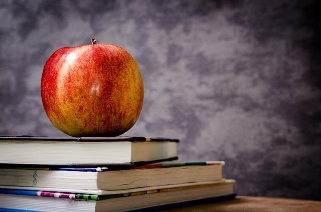 Nutzen Sie die Deutsch lernen online Möglichkeiten